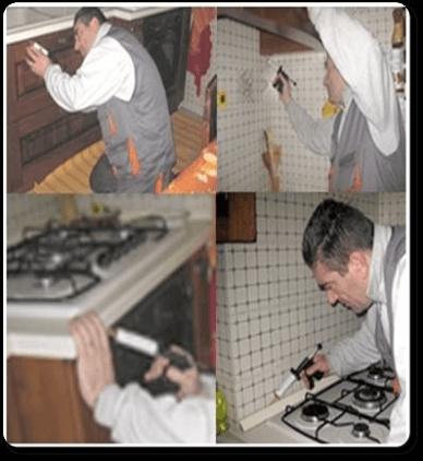 ابادة الصراصير بالرياض,ارخص شركة ابادة صراصير بالضمان