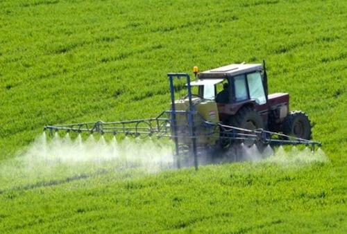 ارخص شركة,ارقام شركات رش المبيدات بالرياض,مكافحة الحشرات